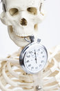 Death and timeout skull concept Royalty Free Stock Photo