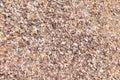 Debris shells texture on the beach Stock Photography
