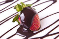 Decadent Strawberry Chocolate Dessert Royalty Free Stock Photos