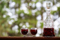 Decanter and wineglasses of red wine outdoors Royalty Free Stock Images