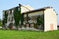 Decaying house with plants an isolated full of in the field in north italy vintage image Royalty Free Stock Photos