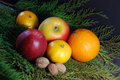 December fruits Stock Photography