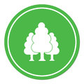 Deciduous forest icon