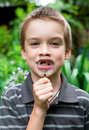Deciduous tooth Stock Images