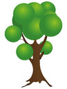 Deciduous tree cartoon with a spherical crown vector illustration Royalty Free Stock Images