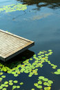Deck with water lilies Stock Image