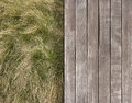 Deck and wild grass Royalty Free Stock Photo