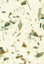 Deckle Edged Natural Wallpaper,  Paper, Texture, Abstract, Stock Photo
