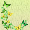 Bright colored butterflies on floral abstraction background