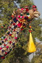 Decorated camel of the indian border security force parading down the raj path in preparation for the annual republic day parade Stock Images