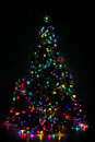 Decorated Christmas Tree Lit U...