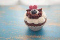 Decorated Cupcake on Rustic Blue Table Top Royalty Free Stock Photo