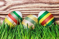 Decorated easter egg in the grass Royalty Free Stock Photography