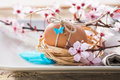 Decorated easter egg and spring flowers on plate table setting with nest natural light rustic wood table Stock Images