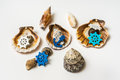 Decorated sea shells with marine wheel and anchor
