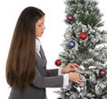 Decorating Office Tree Royalty Free Stock Photography