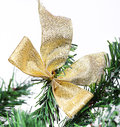 Decoration golden billow on new year tree branch in snow Stock Photography