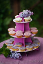 Decoration outdoor birthday with lilac Royalty Free Stock Photography