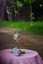 Decoration outdoor birthday with lilac and sweets Royalty Free Stock Images