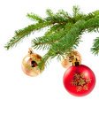 Decorations on pine branches Royalty Free Stock Image