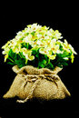 The Decorative Artificial Flowers Stock Image