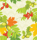 Decorative autumn background Stock Images