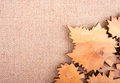 Decorative background with curved leaves on the burlap autumn Stock Image