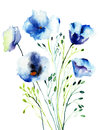 Decorative blue flowers watercolor illustration Royalty Free Stock Images