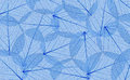 Decorative blue skeleton leaves background Royalty Free Stock Photo