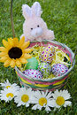 Decorative Easter basket with daisies on grass Royalty Free Stock Photography