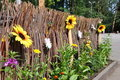 Decorative fence with flowers Royalty Free Stock Photography