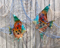 Decorative fishes in net on fence colorful caught a a wooden Stock Images