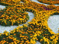 A decorative flowerbed with yellow and red plants to be used as background Royalty Free Stock Image