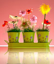 Decorative flowers Stock Images