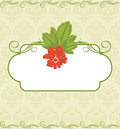 Decorative frame with red berries bunch on the orn ornamental background illustration Stock Photography