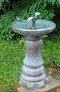 Decorative garden birdbath in lush green garden Royalty Free Stock Images