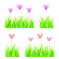 Decorative grass and flowers