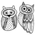 Decorative Hand dravn Cute Owl Sketch Doodle black bird on white background. Adult Coloring. Vector Royalty Free Stock Photo
