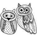 Decorative Hand drawn Cute Owl Sketch Doodle black and white. Vector