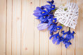 Decorative heart and spring flowers Royalty Free Stock Photo
