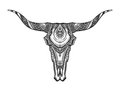 Decorative Indian bull skull. Hand drawn vector illustration Royalty Free Stock Photo
