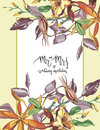 Decorative letter - Mr and mrs. Summer flower Crocosmia, Aquilegia frame in a watercolor style . Aquarelle