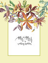 Decorative letter - Mr and mrs. Summer flower Crocosmia, Aquilegia frame in a watercolor style isolated. Aquarelle