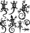 Decorative lizards Royalty Free Stock Image