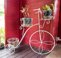 Decorative metal bicycle painted white with pots of plant Stock Image