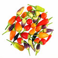 Decorative peppers Royalty Free Stock Photography