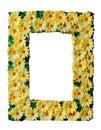 Decorative photo frame Stock Image