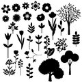 Decorative plants collection of various flowers and trees Royalty Free Stock Photo
