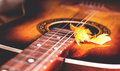 Decorative plumelet on the strings of a guitar Royalty Free Stock Photo
