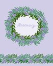 Decorative rosemary frame and seamless border set of samless elements rounded with wild branches Royalty Free Stock Photo